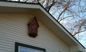 Mounted Bat House