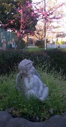 Chrub in garden